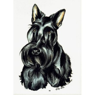 Aufkleber / Sticker / Autoaufkleber - Hunde Scottish Terrier [r054]